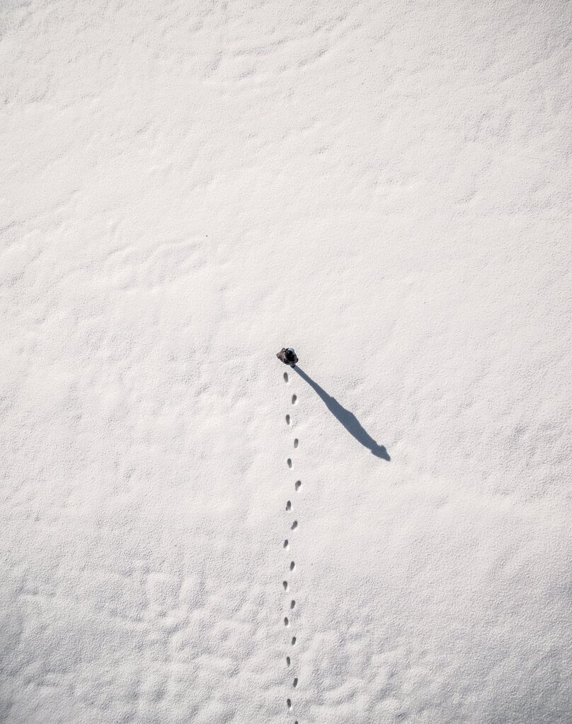 Photo: Winter Canvas – Inspire 1 X3