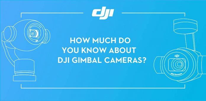 DJI gimbal camera