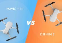 DJI Mini 2 vs. Mavic Mini