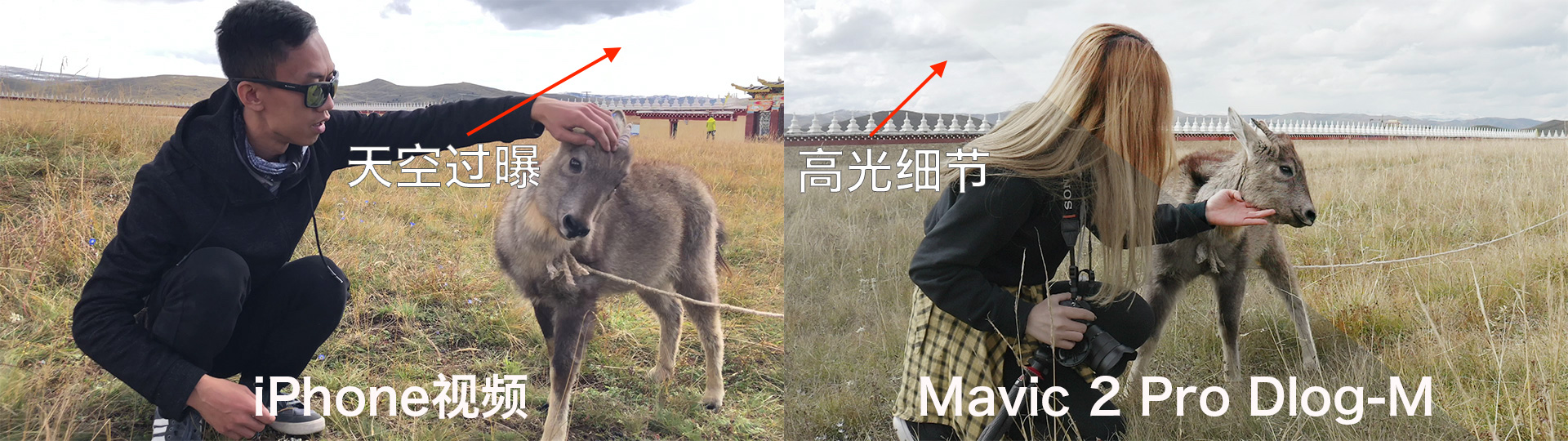 photo took by iPhone vs. photo took by mavic 2 pro