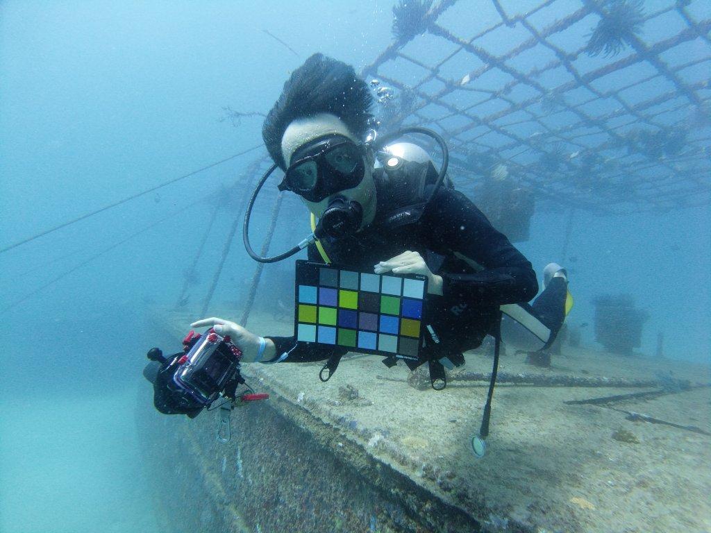 testing dji osmo action underwater大疆灵眸运动相机水下测试