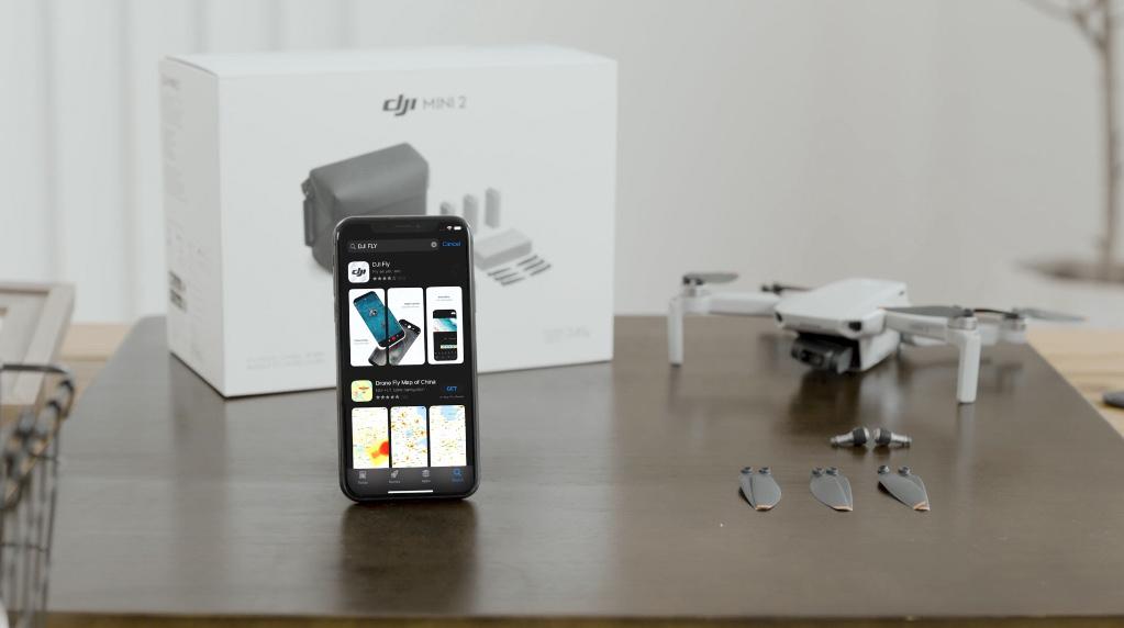 DJI Mini 2 and DJI Fly app