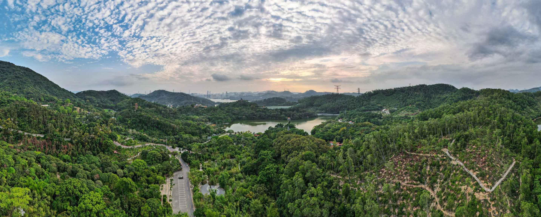 Mavic Air 2 HDR Panorama